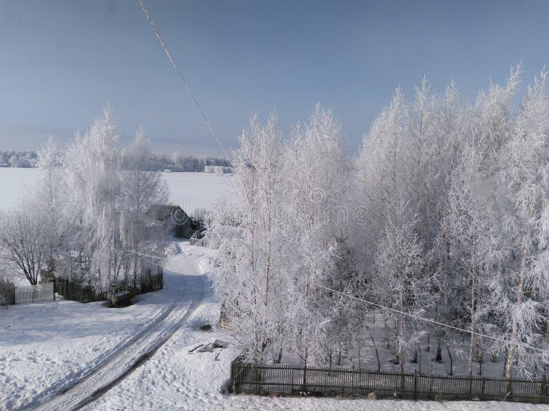 De winterwillage stock afbeelding