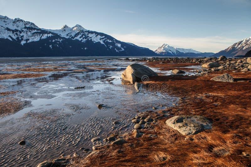 De winterzon op de Chilkat-Inham stock afbeeldingen