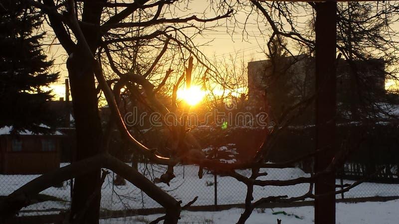 De winterzonsopgang stock afbeelding