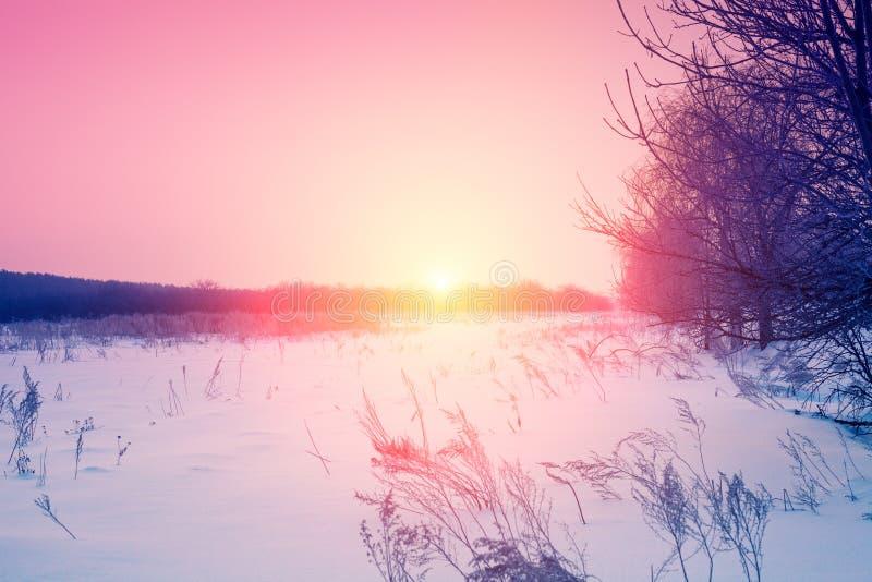 De winterzonsopgang in het platteland stock foto