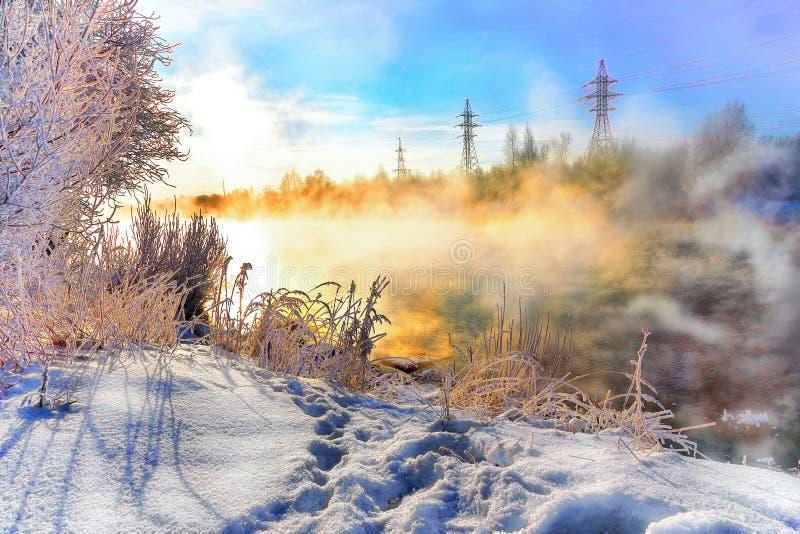 De winterzonsopgang in mist over een koude die rivier door bomen en sneeuw wordt omringd stock foto's