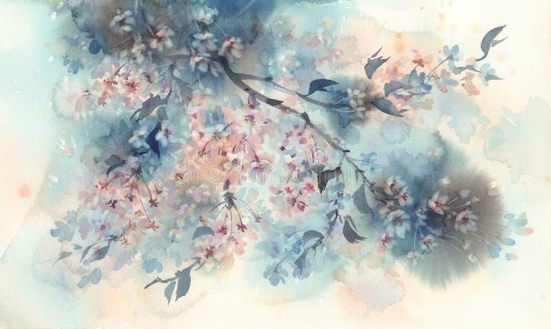 De witte bloesem van de sakurabloem op een donkere waterverf als achtergrond royalty-vrije stock foto's