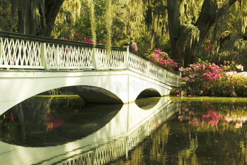De witte brug overspant een waterweg die tot de azaleatuinen leiden royalty-vrije stock afbeelding
