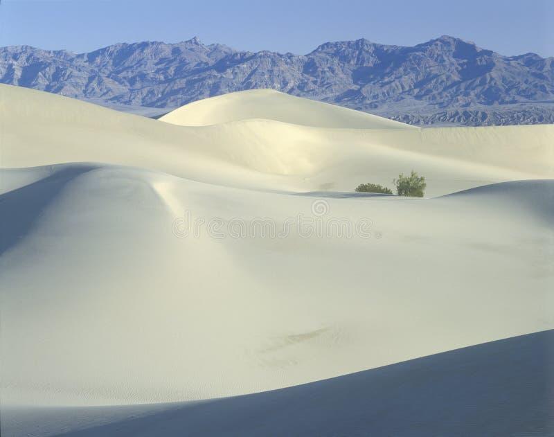 De witte duinen van het Zand, het Nationale Park van de Vallei van de Dood, CA royalty-vrije stock fotografie