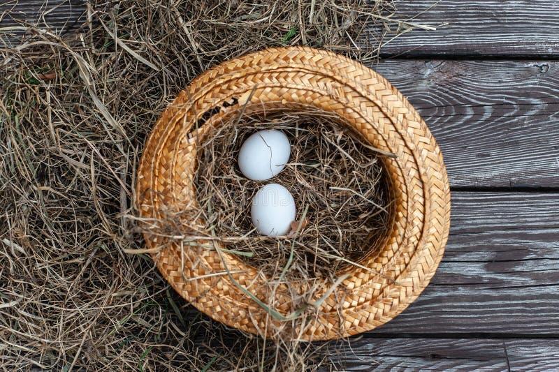 De witte eieren legt in de gele strohoed als nest met droog hooi binnen op de houten oude raad stock foto's