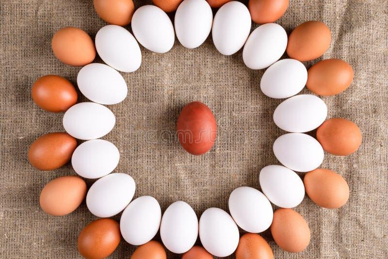 De witte en bruine eieren liggen in cirkel met één rood ei in centrum op canvas stock foto's