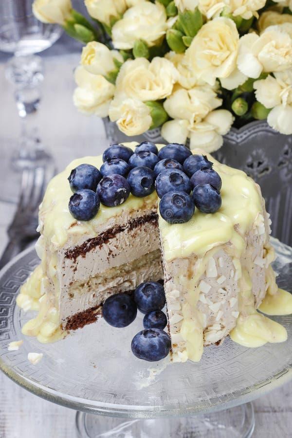 De witte en donkere die cake van de chocoladelaag met bosbessen wordt verfraaid stock afbeelding