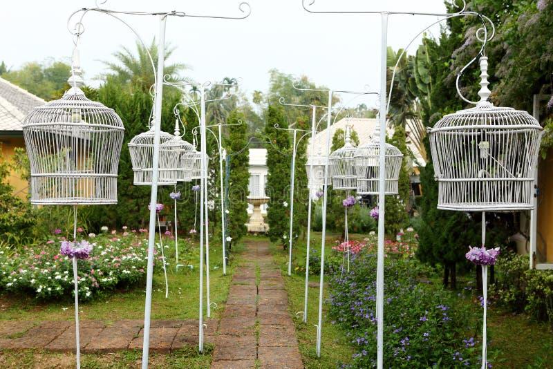 Download De Witte Kooi Van De Vogel In De Tuin Stock Foto - Afbeelding bestaande uit achtergrond, glorie: 29510592