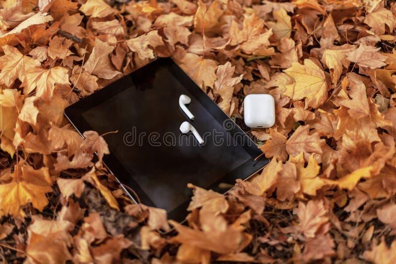 De witte oortelefoons/de hoofdtelefoons en de zwarte tablet vullen op een achtergrond van gele bladeren op royalty-vrije stock afbeelding