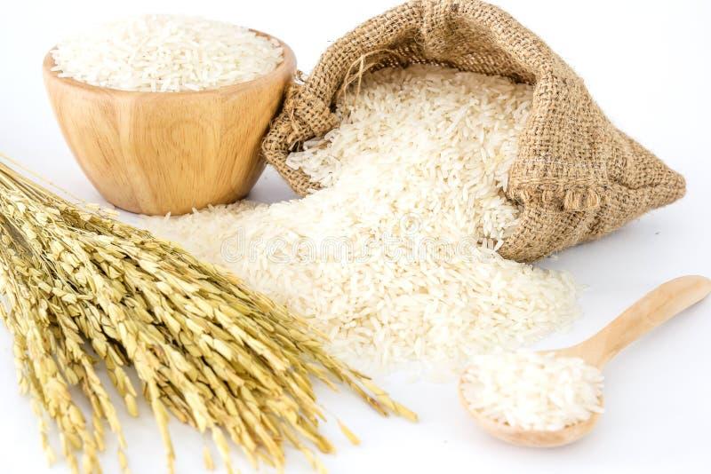 De witte rijst in kom en een zak, een houten lepel en een rijst planten op witte achtergrond stock foto