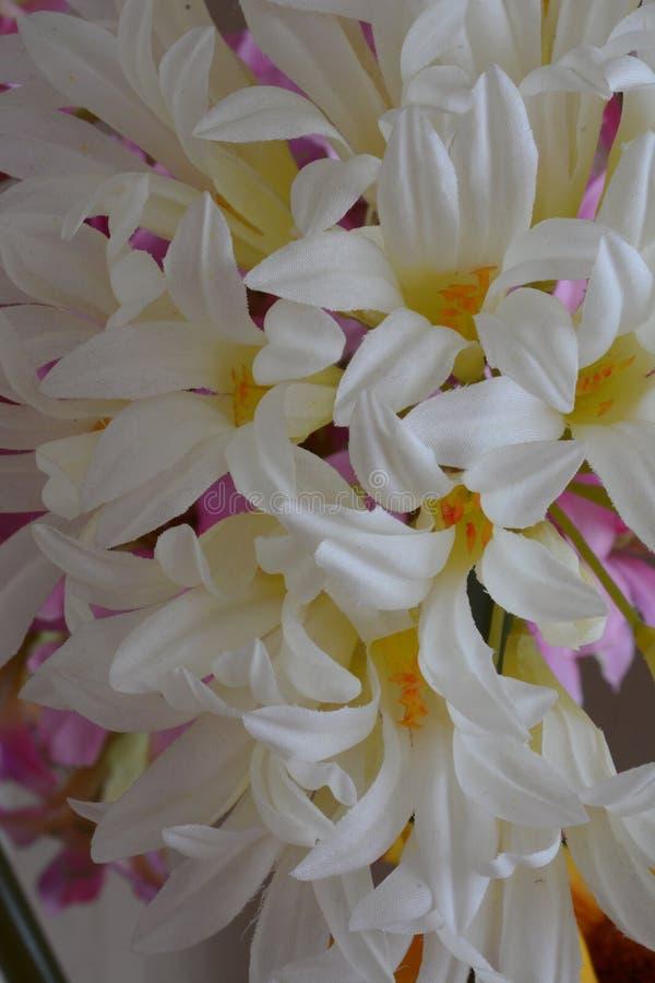 De witte textuur van de bloemenstof stock afbeelding