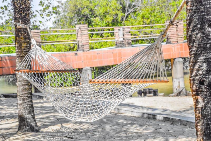 De witte voederbak is gebonden aan twee kokospalmen stock fotografie