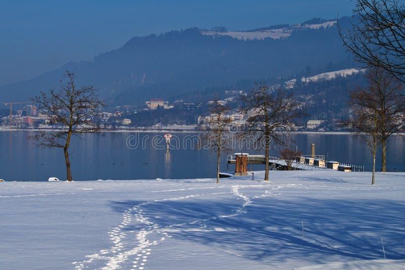 De witte winter door het Meer Constance Bodensee van Oostenrijk royalty-vrije stock fotografie