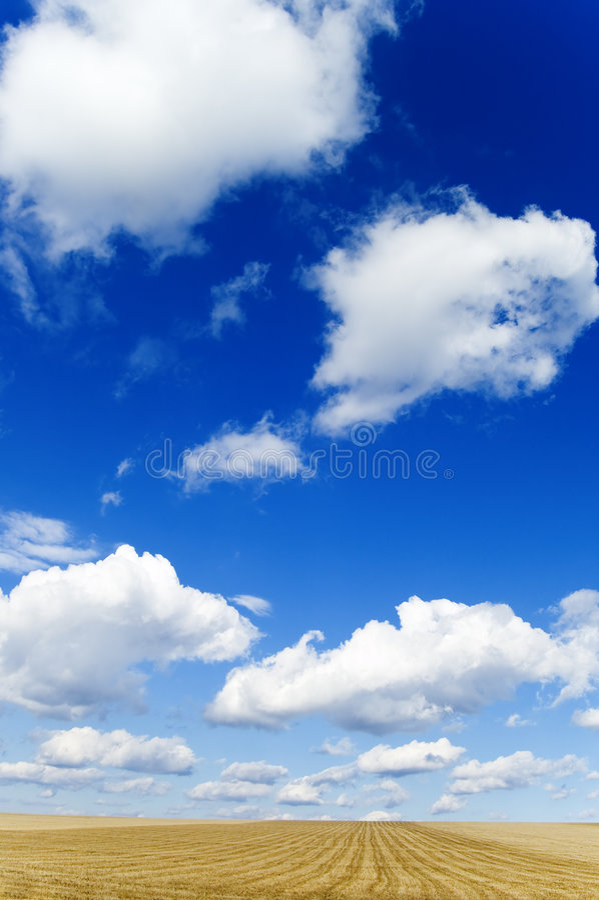 De witte wolken. royalty-vrije stock foto