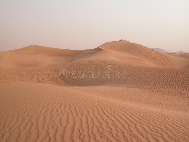 In de woestijn royalty-vrije stock foto