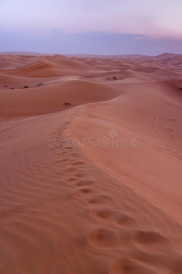 De Woestijn Al Madam van Doubai royalty-vrije stock foto
