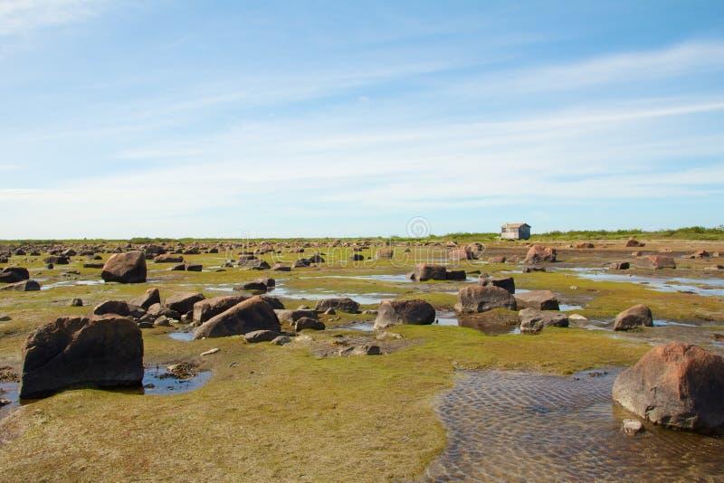De Woestijn en de hut van Hudson Bay Low Tide Stone stock fotografie