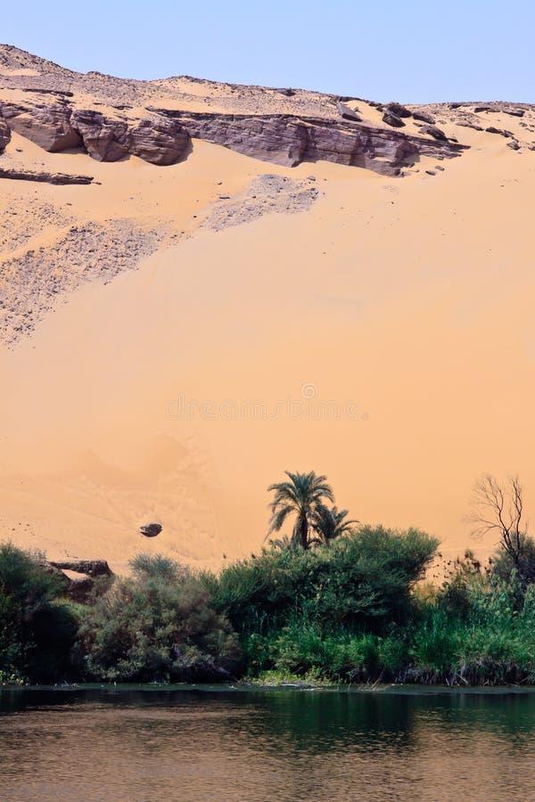 De woestijn ontmoet de Nijl stock foto