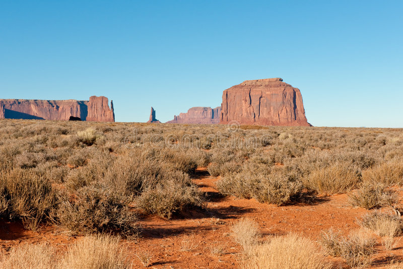 De woestijn van Arizona stock afbeelding