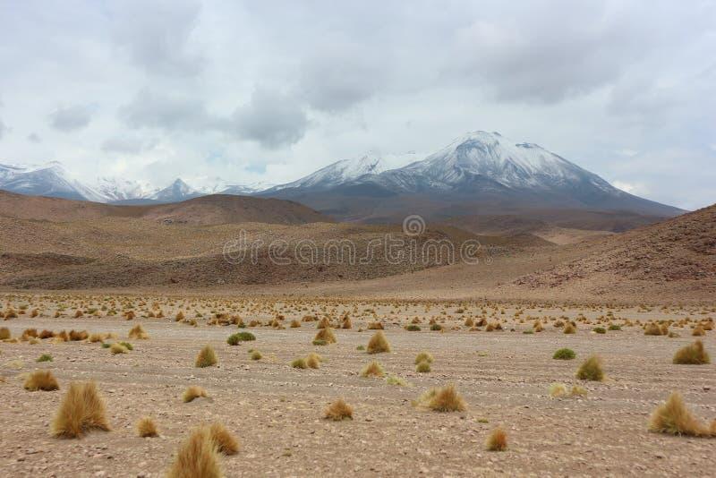 De woestijn van Atacama royalty-vrije stock fotografie
