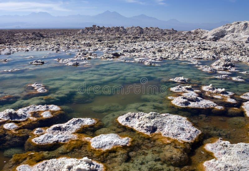 De Woestijn van Atacama - Chili royalty-vrije stock afbeeldingen