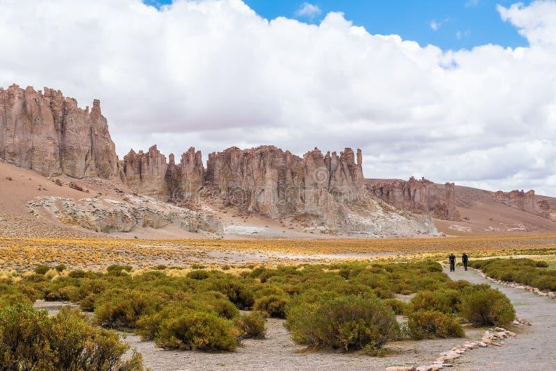 De Woestijn van Atacama, Chili stock fotografie