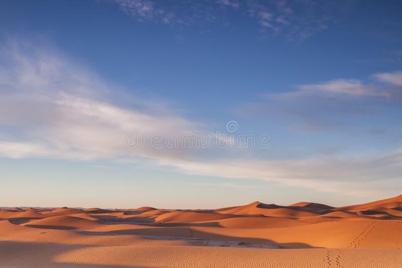 De woestijn van de Sahara bij zonsopgang stock afbeelding