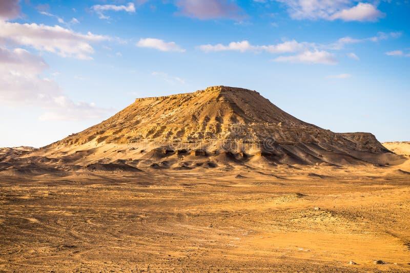 De Woestijn van de Sahara Egypte royalty-vrije stock foto's