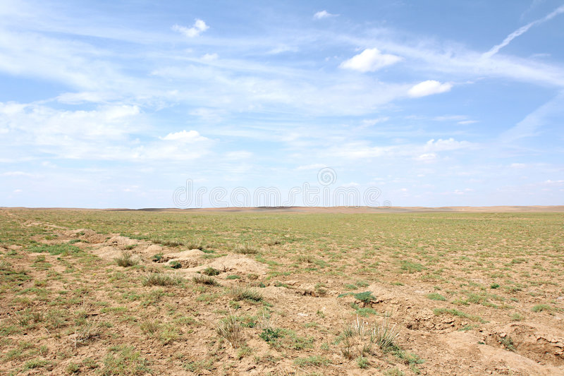De woestijn van Gobi stock afbeelding