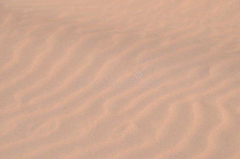 De Woestijn van het zandduin in Maspalomas stock foto