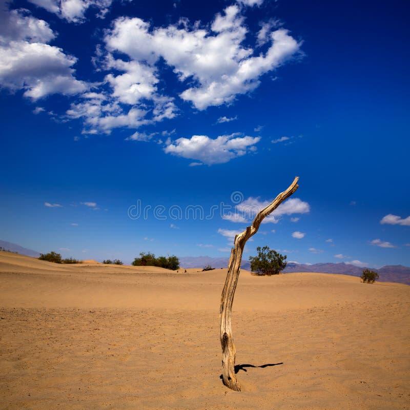 De woestijn van Mesquiteduinen in het Nationale Park van de Doodsvallei stock foto