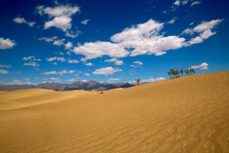 De woestijn van Mesquiteduinen in het Nationale Park van de Doodsvallei royalty-vrije stock afbeelding