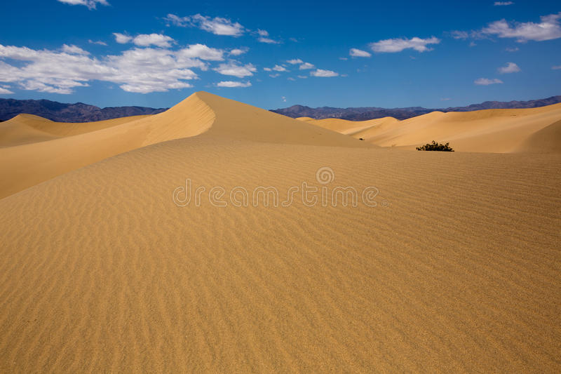 De woestijn van Mesquiteduinen in het Nationale Park van de Doodsvallei stock afbeeldingen
