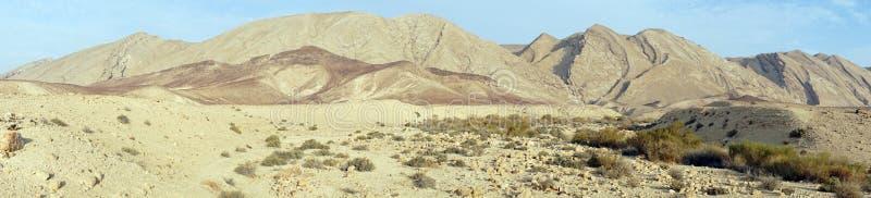 De Woestijn van Negev stock foto