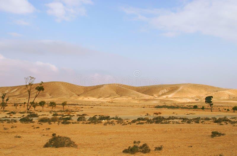 De Woestijn van Negev in Israël. royalty-vrije stock afbeeldingen