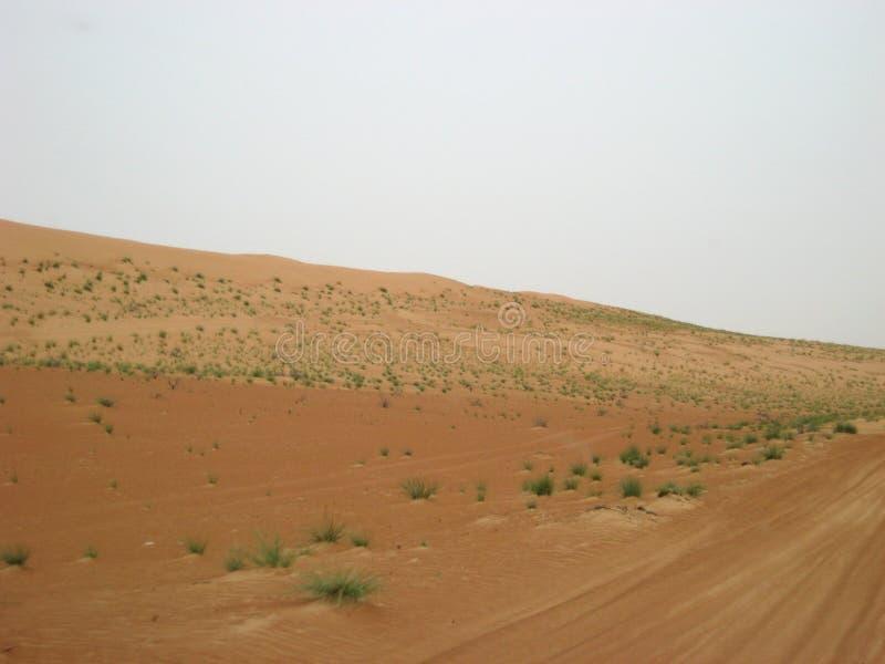 De woestijn van Oman bij zonsondergang in de Wahiba-zandwoestijn royalty-vrije stock afbeeldingen