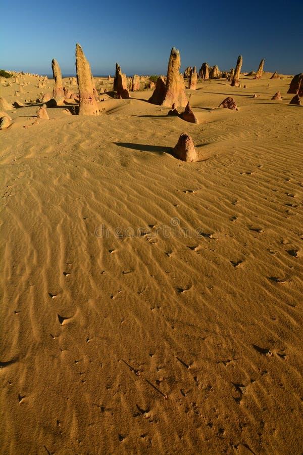 De woestijn van Toppen Nambung Nationaal Park cervantes Westelijk Australië australië stock afbeeldingen