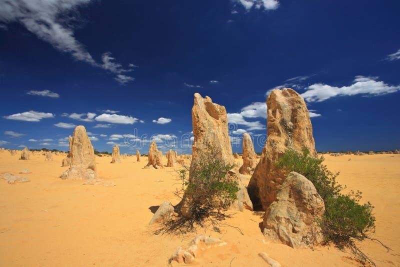 De Woestijn van toppen, Westelijk Australië stock foto's
