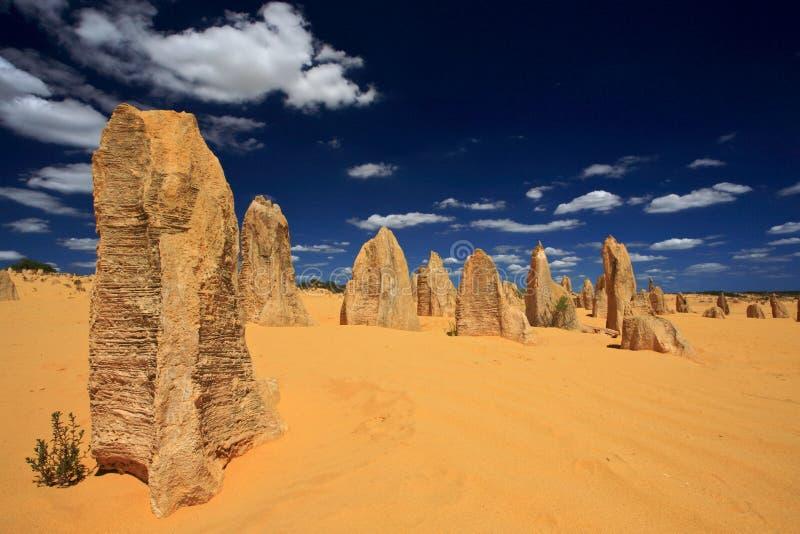 De Woestijn van toppen, Westelijk Australië royalty-vrije stock foto's