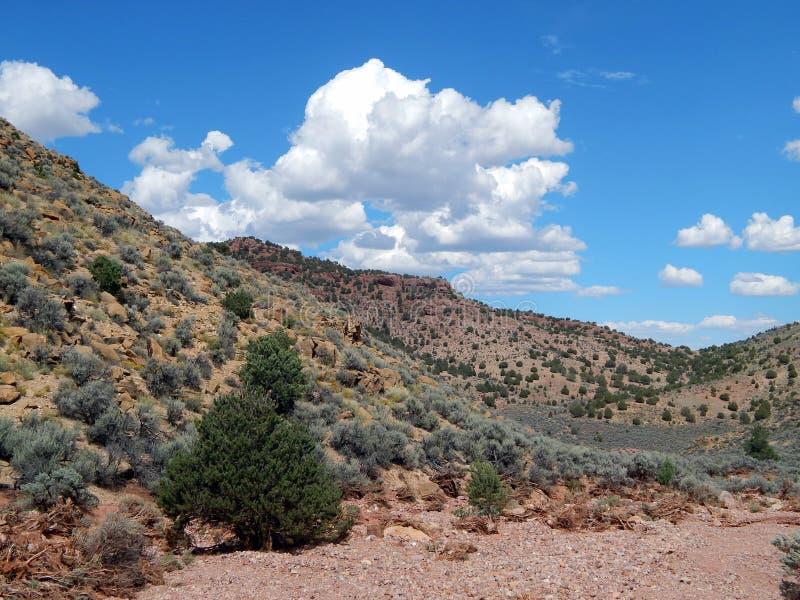 De Woestijnheuvels van zuidwestenutah stock foto