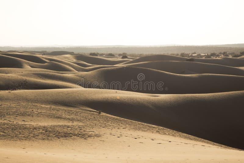 De woestijnlandschap van Thar, mening van de streek van Thar, in Rajasthan royalty-vrije stock fotografie