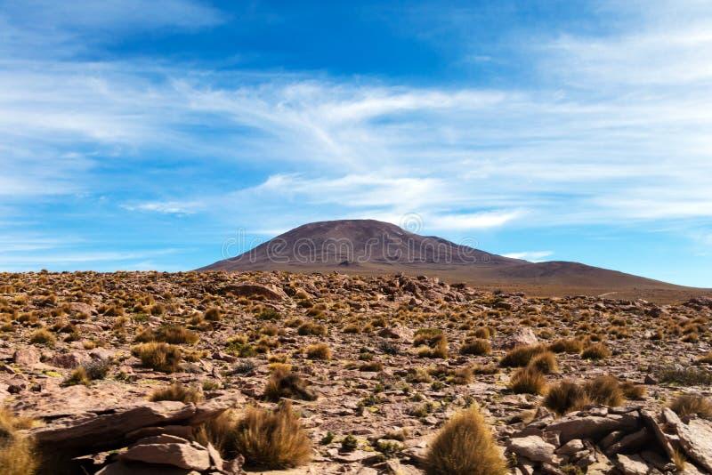De woestijnlandschappen met bergen in Bolivië bij het droge seizoen, droge vegetatie is een natuurlijke achtergrond stock afbeelding