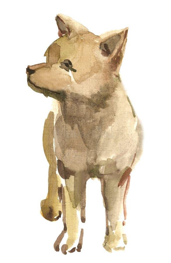 De wolf van het puppy royalty-vrije illustratie