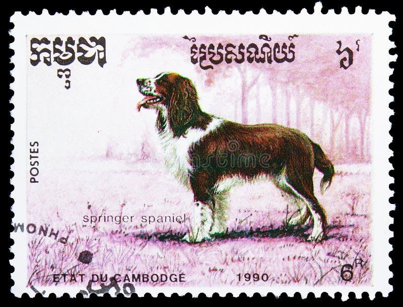 De wolfszweerfamiliaris van Canis van het aanzetsteenspaniel, Honden serie, circa 1990 royalty-vrije stock foto