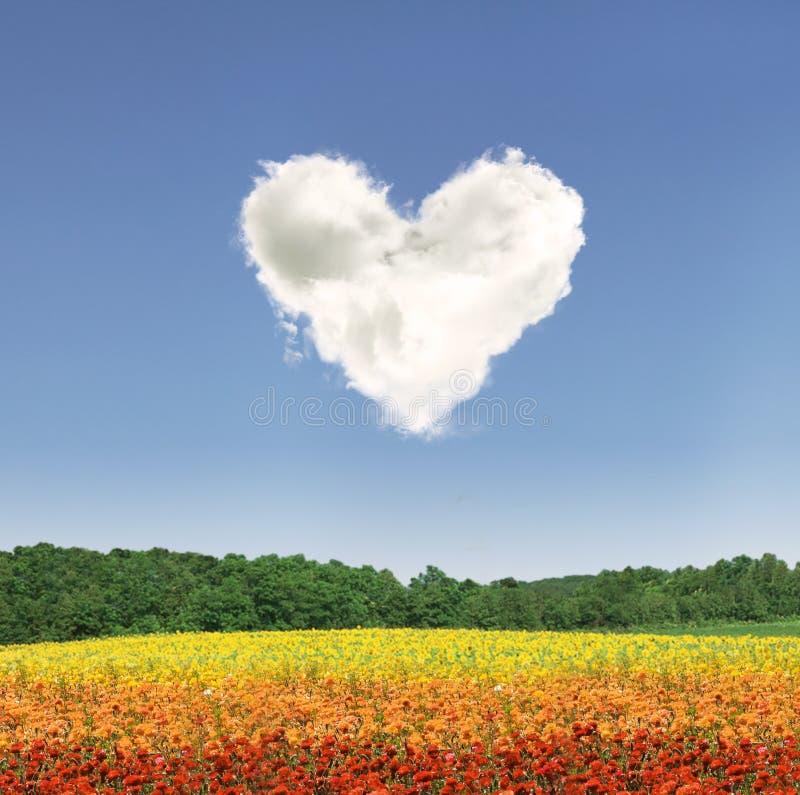 De wolk van het hart over kleurrijke bloemen stock fotografie