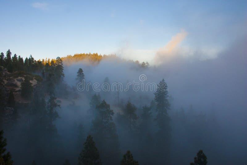 In de wolken bovenop de berg Sierra Nevada is mou stock afbeelding