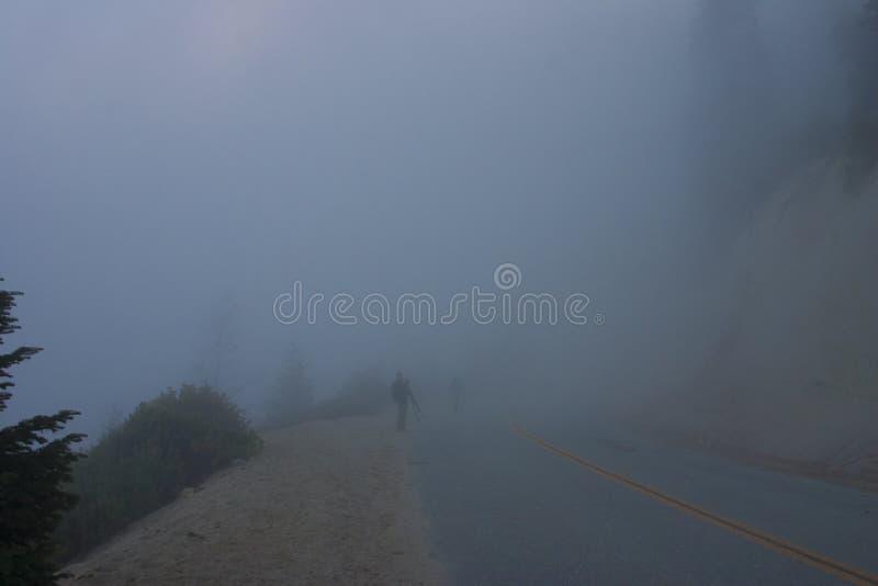 In de wolken bovenop de berg Sierra Nevada is mou royalty-vrije stock fotografie