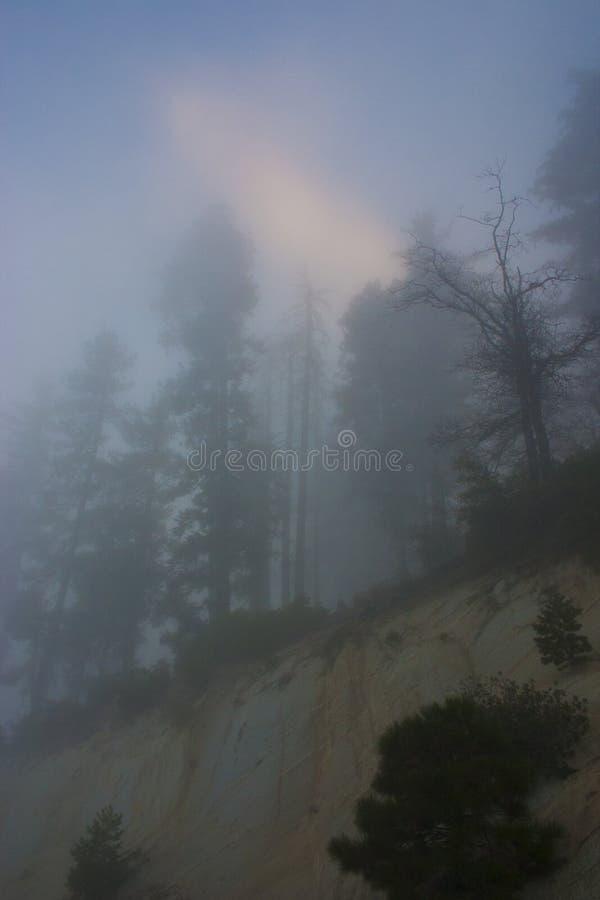 In de wolken bovenop de berg Sierra Nevada is mou stock fotografie