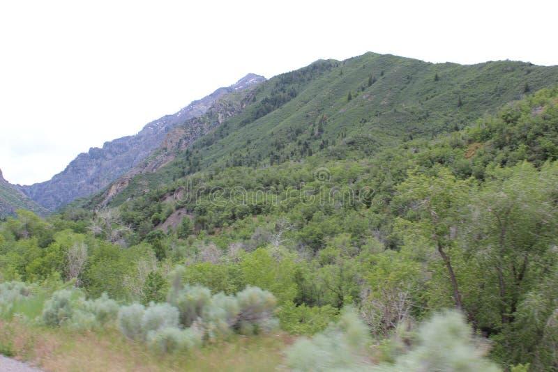 De wolkengras a9 van de berg licht hemel stock foto