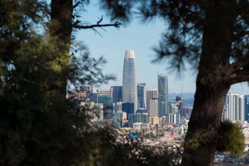 De wolkenkrabber van San Francisco door bomen royalty-vrije stock foto